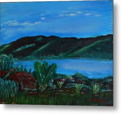 Lake In The Mountains Metal Print