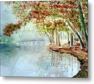 Lakeside In The Carolinas Metal Print by Ahonu