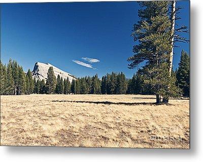 Lambert Dome In Yosemite National Park Metal Print by Justin Paget