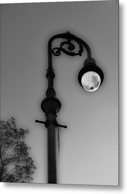 Metal Print featuring the photograph Savannah Lamp Post by Frank Bright