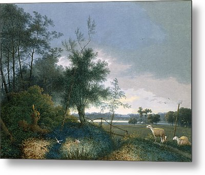 Landscape With A Fox Chasing Geese Metal Print by Joseph August Knip