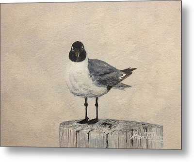 Metal Print featuring the painting Laughing Gull by Stan Tenney