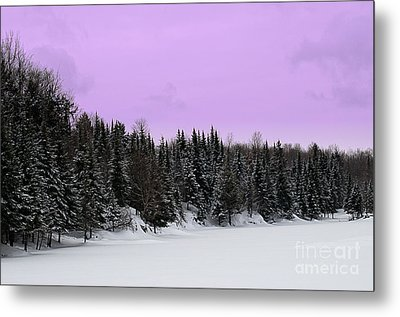 Metal Print featuring the photograph Lavender Skies by Bianca Nadeau