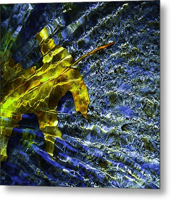 Metal Print featuring the photograph Leaf In Creek - Blue Abstract by Darryl Dalton