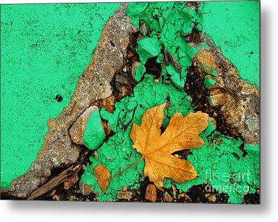 Leaf On Green Cement Metal Print by Amy Cicconi