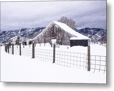 Metal Print featuring the photograph Let It Snow by Kristal Kraft