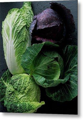 Lettuce Metal Print by Romulo Yanes