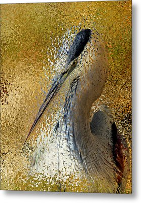 Life In The Sunshine - Bird Art Abstract Realism Metal Print by Georgiana Romanovna