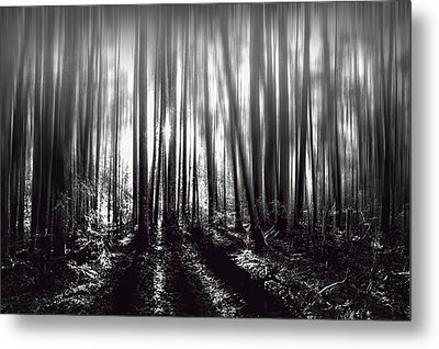 Light At The End Metal Print by Gary Smith