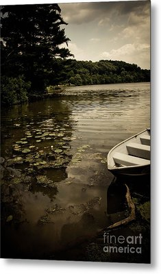 Lilypads In The Lake Metal Print by Amy Cicconi