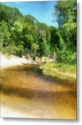 Little Black Creek - Hoffmaster State Park Metal Print by Michelle Calkins