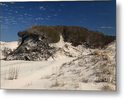 Lively Dunes Metal Print by Adam Jewell