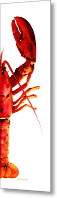 Lobster - The Right Side Metal Print by Sharon Cummings