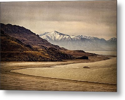 Lonesome Land Metal Print by Priscilla Burgers