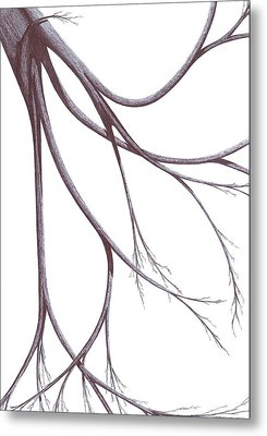 Metal Print featuring the drawing Long Branches by Giuseppe Epifani