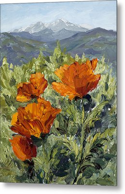 Longs Peak Poppies Metal Print