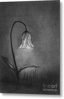 Metal Print featuring the drawing Look For Your Life by J Ferwerda