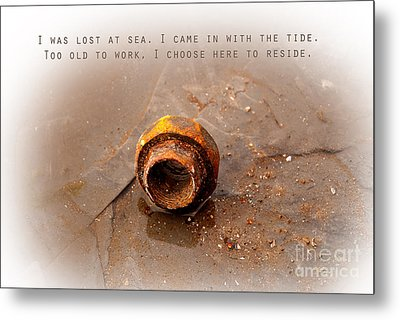Metal Print featuring the photograph Lost At Sea by Lena Wilhite