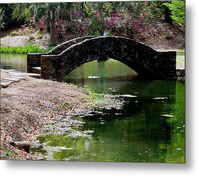 Louisiana Beauty Metal Print by Robin Lewis