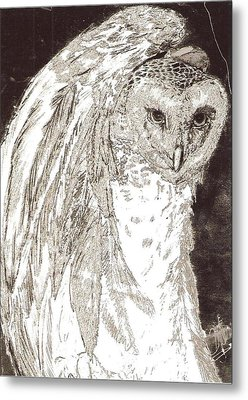 Love Owl Metal Print by George Harrison