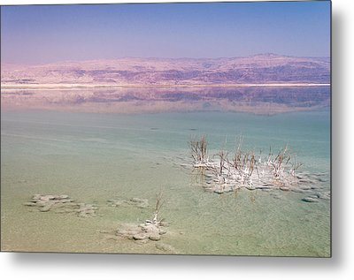 Magic Colors Of The Dead Sea Metal Print by Sergey Simanovsky