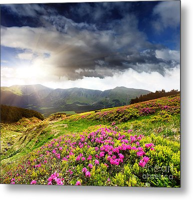 Metal Print featuring the photograph Magic Pink Summer Mountain by Boon Mee