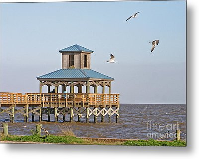 Main Pier At Pleasure Island Metal Print by D Wallace