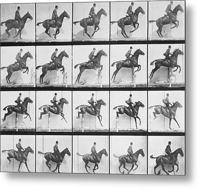 Man And Horse Jumping A Fence Metal Print