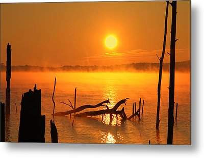 Mantis Sunrise Metal Print