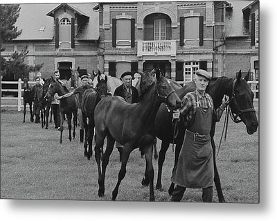 Mares And Foals At The Farm Of Marie-helene De Metal Print
