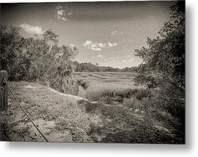 Marsh 2 Metal Print by J Riley Johnson