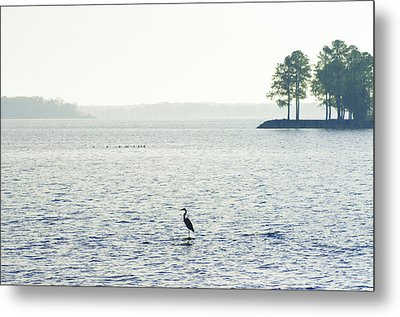 Maryland's Chesapeake Bay Metal Print by Bill Cannon