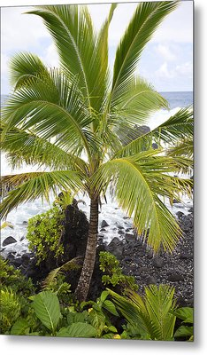 Maui Coast Metal Print by Jenna Szerlag