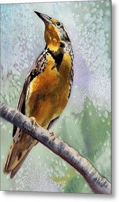 Meadowlark Metal Print by Anne Gifford