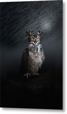 Midnight Guardian Metal Print by Renee Forth-Fukumoto