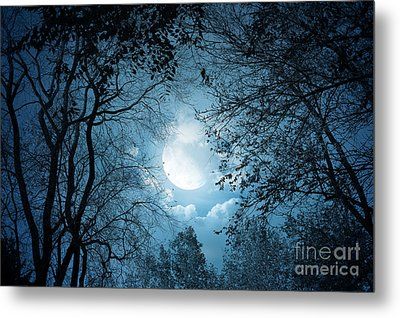 Moonlight With Forest Metal Print by Boon Mee