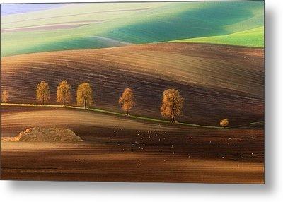 Moravian Trees Metal Print