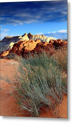 Morning At Snow Canyon State Park Metal Print by Eric Foltz