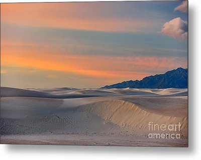 Morning Glory In White Sands Metal Print by Sandra Bronstein