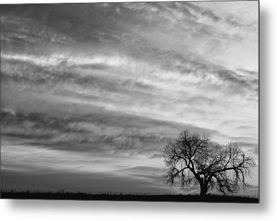 Morning Has Broken Like The First Dawning Landscape Bw Metal Print by James BO  Insogna