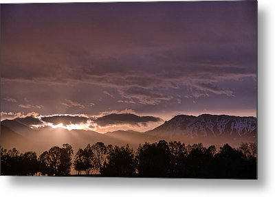 Morning Haze Metal Print
