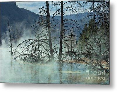 Morning Mist At Mammoth Hot Springs Metal Print by Sandra Bronstein