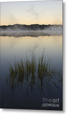 Morning Mist At Sunrise Metal Print by David Gordon