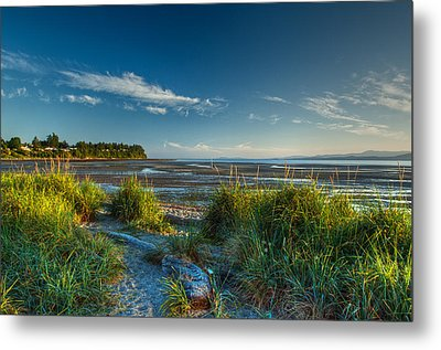 Morning On The Beach Metal Print by Randy Hall