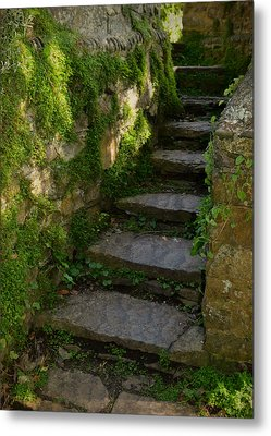 Mossy Steps Metal Print by Carla Parris