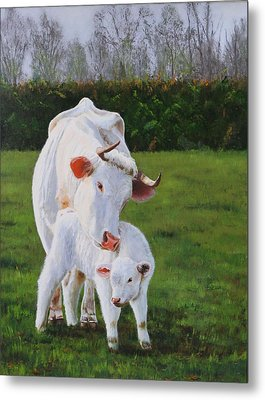 Mother And Her Calf Metal Print by Lepercq Veronique