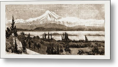 Mount Baker And San Juan Island As Seen Through A Field Metal Print by Litz Collection