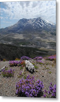 Mount Saint Helen's In Summer Metal Print by Robert  Moss