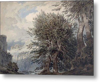 Mountainous Landscape With Beech Trees Metal Print by John Robert Cozens