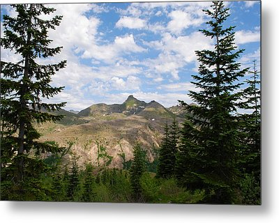 Metal Print featuring the photograph Mountains And Fir Trees by Robert  Moss